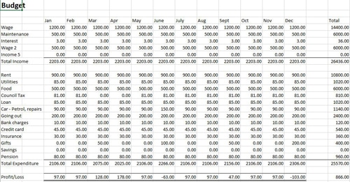Personal or business budget template